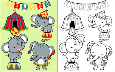 coloring book vector with elephant on circus show