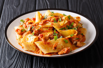 Italian noodles with slow cooked pork in a spicy tomato sauce closeup on a plate. horizontal
