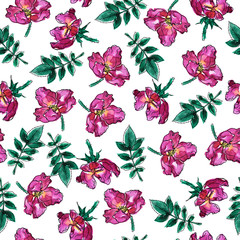 Seamless pattern with pink roses and green leaves on white background. Hand drawn watercolor and ink illustration.