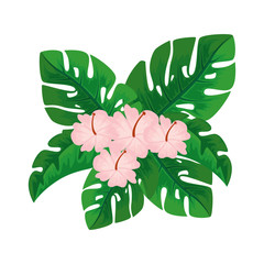 cute flower with leafs decorative