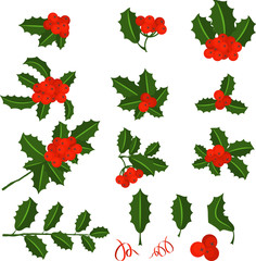 Holly berry branch set. Leaves for traditional ornamental wreath from plants for greeting cards for for Merry Christmas and Happy New Year.