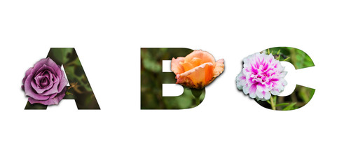 Flower font Alphabet a, b, c made of Real alive flowers with Precious paper cut shape of letter. Decoration in spring