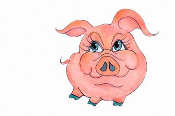 Свинка на белом фоне.