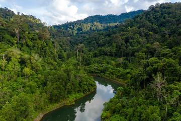 Aerial view of dense, mountainous tropical rainforest in Thailand