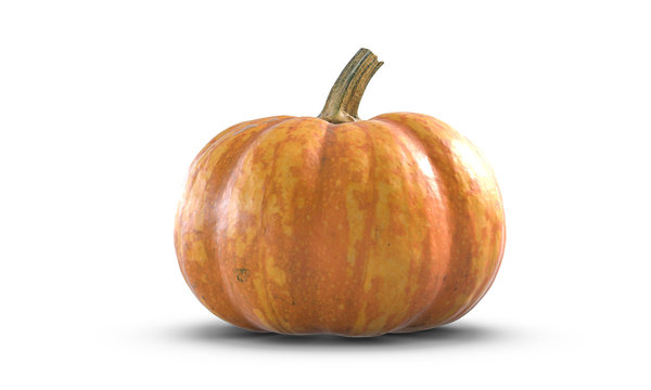 3D illustration of Pumpkin isolated on white background