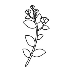 branch with flower and leafs