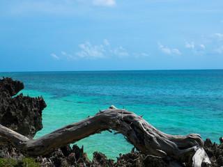 Ausblick - Indischer Ozean