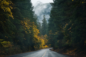 Oregon Roads & Autumn Wall mural