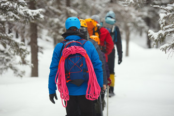 A group of climbers goes to the winter woods in the highlands.