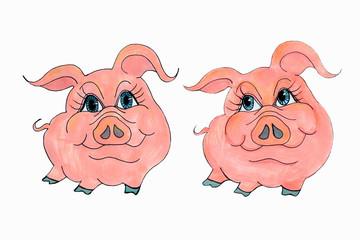 Пара свинок.