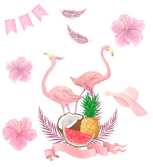 Hand drawn watercolor tropical birds set of flamingo. Exotic rose bird illustrations, jungle tree, brazil trendy art. Perfect for fabric design. White background