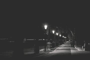 Fototapeta Le chemin en noir et blanc