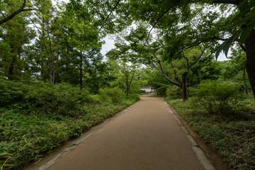 Kokoen Garden in Himeji, Japan