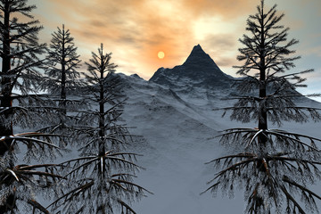 Mountain, a winter landscape,  snowy trees and a wonderful sun in the sky.