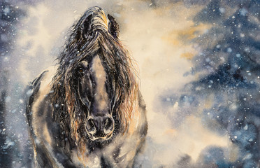 Black horse in winter day.Picture created with watercolors.