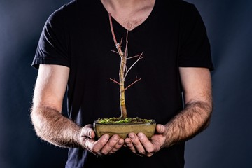 Man holding japanese bonsai tree