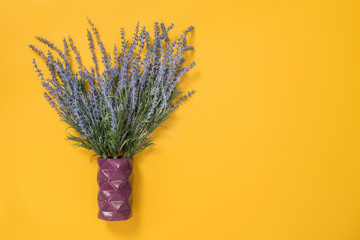 Blue lavender in a vase on yellow background