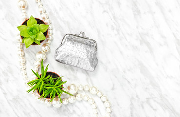Silver purse, succulent plants and pearl necklace
