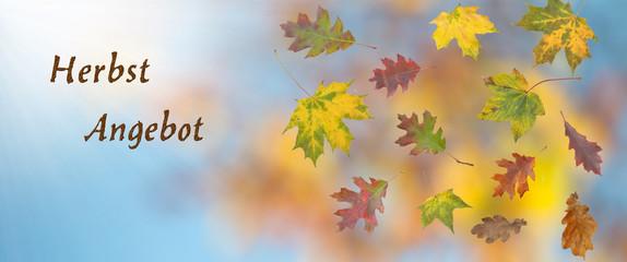 Banner Herbst Angebot