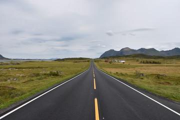 Norwegen, Lofoten, E10, E 10, Straße, Europastraße, Mittellinie, Randmarkierung, Überholverbot, Asphalt, Spurrinne, Tundra, Gras, Hov, Gimsøya