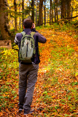 Back view male photographer in bright autumn forest