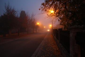 morning autumn city street in the fog