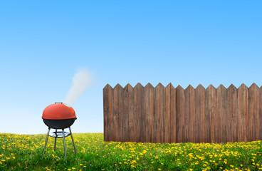 bbq picnic on backyard