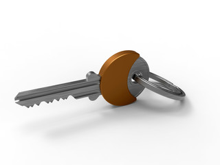 3D render - isolated metallic key