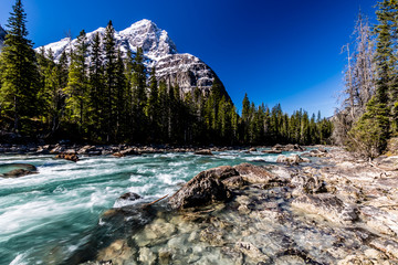 Cataract Brook with Popes Peak in the background, Yoho National Park, British Columbia, Canada