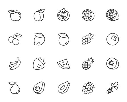 Vector fruits icon set in thin line style