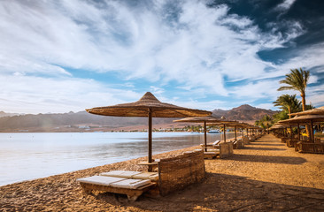 Relax under parasol on the beach of Red Sea Egypt