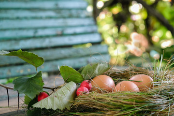 Three eggs from a home farm and a hawthorn branch on a wooden bench.