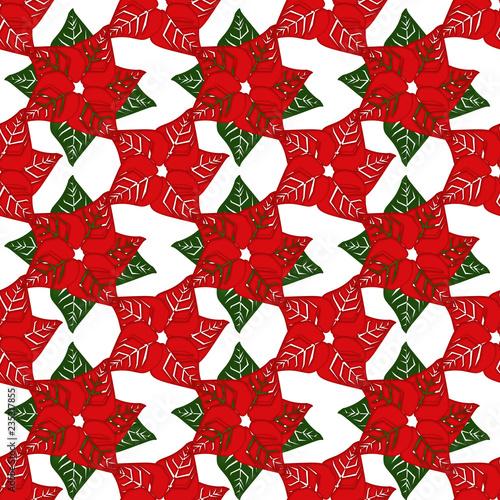 Pattern Con Stelle Di Natale Su Sfondo Bianco Stock Photo And