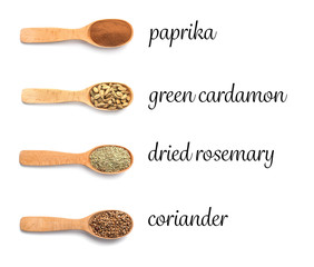 Wooden spoons with different spices and herb on white background, top view. Collection with names