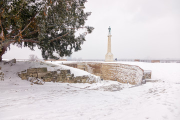 """"""" Victor """" Monument under the snow"""