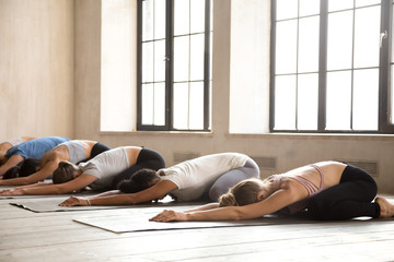 Group of young diverse sporty people practicing yoga lesson, doing Child exercise, Balasana pose, mixed race active female students working out at club or studio. Well being, wellness concept
