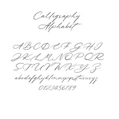 Hand drawn typeface set isolated on white. Brush painted characters: lowercase and uppercase. Vector font. Typography alphabet for your designs: branding, card, wedding invitation. Modern calligraphy