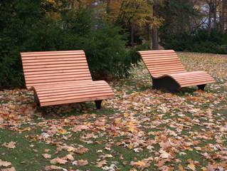 Ruhebänke im herbstlichen Park