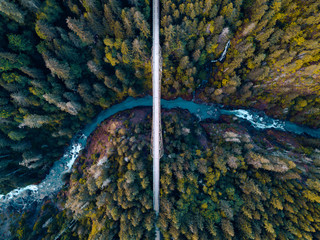 High aerial drone view of an abandoned bridge running through the dense forest of the Pacific Northwest