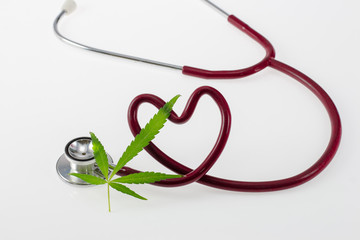 Stethoscope in Shape of Heart on Green Cannabis Leaf Isolated On White Background.