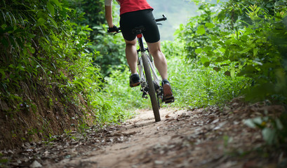 Cyclist legs riding Mountain Bike on forest trail