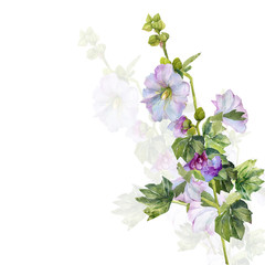 Watercolor image of a bush of mallow.