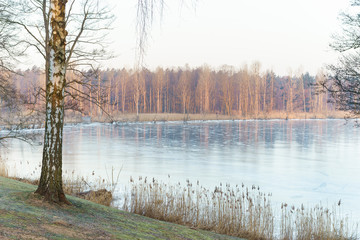 Winter am zugefrorenem See
