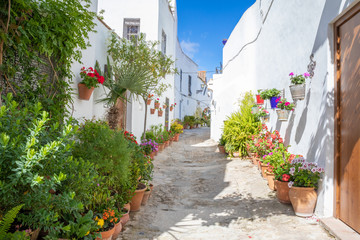 pedestrian alley narrowing with plants and flowers in pots in famous Andalusian old town, with...