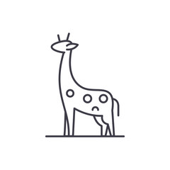 Giraffe line icon concept. Giraffe vector linear illustration, sign, symbol