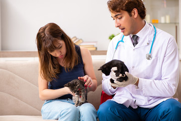 Vet doctor visiting sick kittens at home