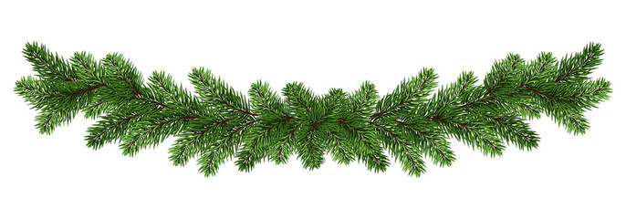 Long garland of spruce / pine branches.Winter festive decorations. Panorama.  Isolated on white background without shadow.