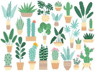 Home plants in pots. Nature houseplants, decoration potted houseplant and flower plant planting in pot vector isolated illustration