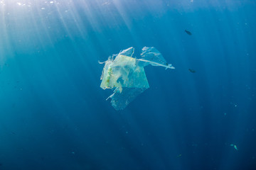 A shredded plastic bag drifting under the surface of a blue, tropical ocean