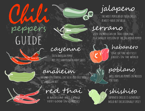 Chili peppers guide. Graphic vector illustration. Chalkboard style